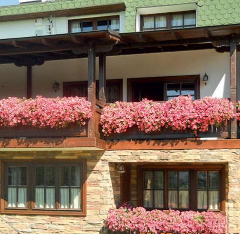 cvekinja-za-balkoni-3.jpg