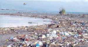 Устието на реката Бојана – еколошка бомба