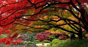 Есенски пејзажи