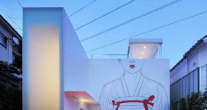 Цртежи со мотиви од азиската култура на фасади од модерни јапонски куќи