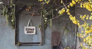 Напуштена куќа претворена во цветна оаза