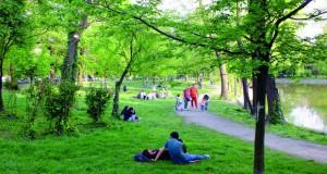 Придобивки од зеленилото во населени места