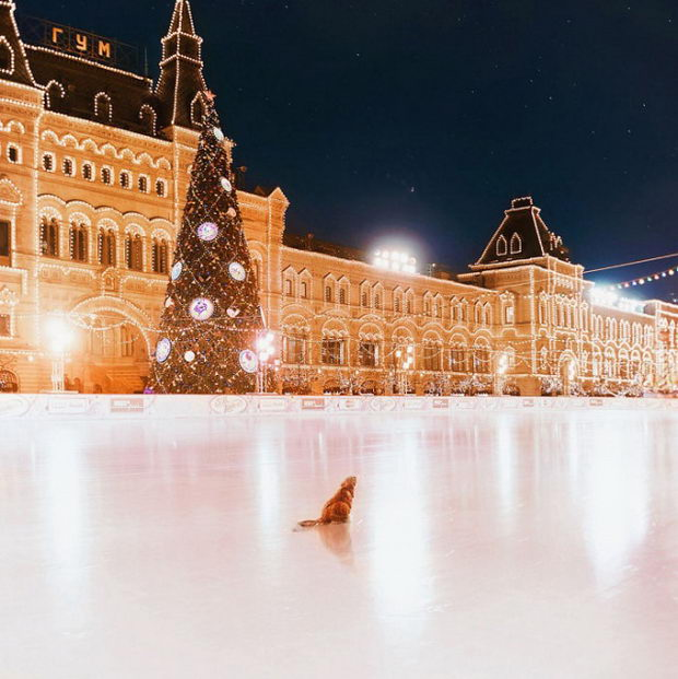moskva-foto-zima