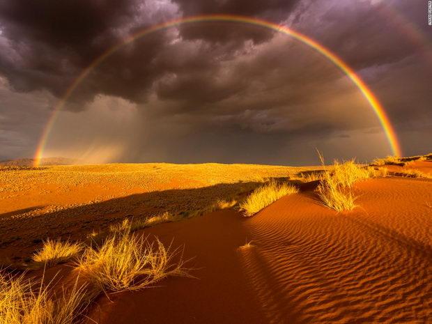 pustinja-vinozito