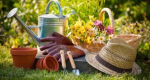 Подготовка на градината во пресрет на пролетта