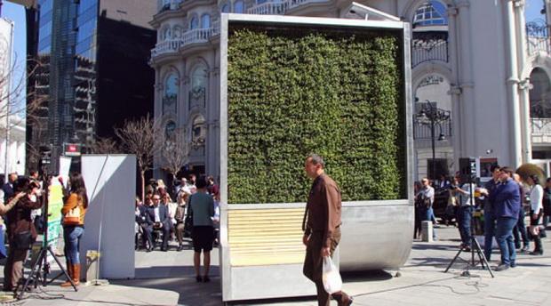 city tree vo skopje