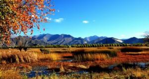 Кина планира да креира најголем национален парк во светот
