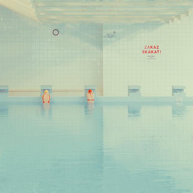 фотографии на базен (8)