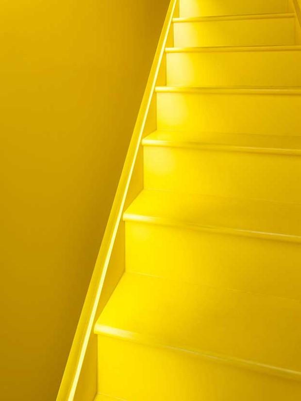 жолта кујна (3)