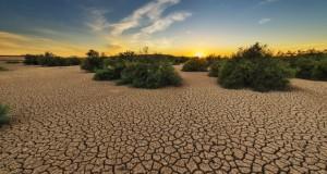 Повеќе од 1/4 од Земјата ќе се претвори во пустина