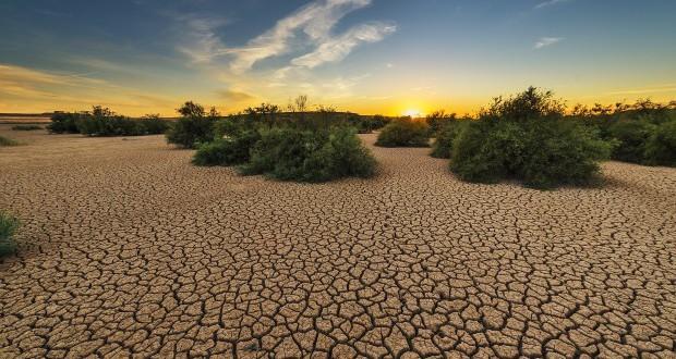 Повеќе од 1 4 од Земјата ќе се претвори во пустина