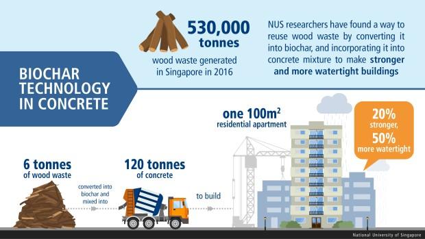 Biochar-infographic