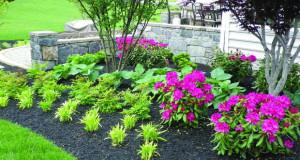 Подготовка на градината за топлото лето