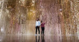 За оваа неверојатна уметничка инсталација биле потребни 500.000 цвеќиња