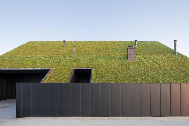 House-behind-the-roof-naslovna