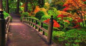 Живописна енергија во секоја градина