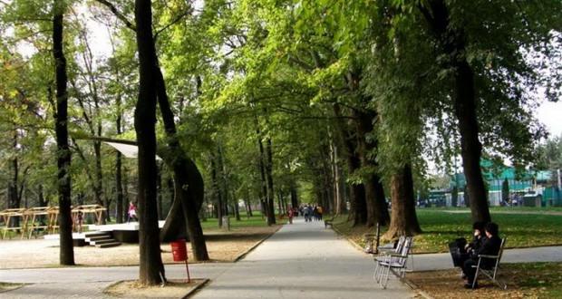 Попишани 65.844 дрвја и 28.395 грмушки под надлежност на Град Скопје