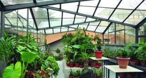 Ботаничка градина – дом на растителното богатство