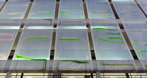 Завеса од алги впива јаглерод диоксид и генерира кислород