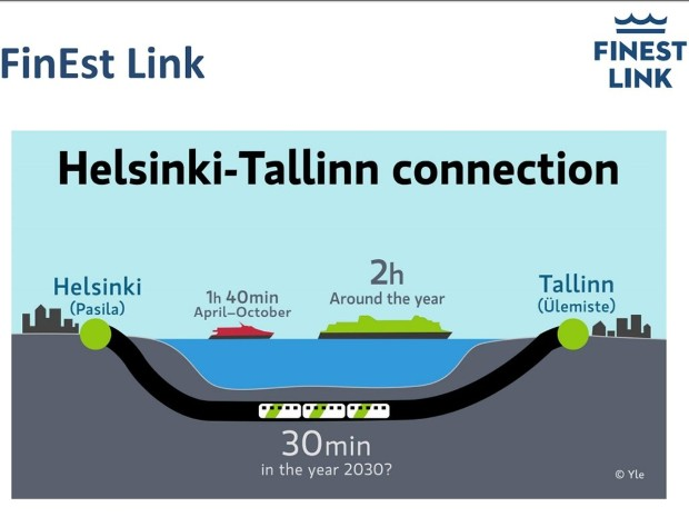 talin1