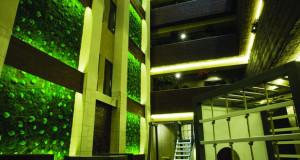 """""""Зелени sидови"""" кои красат многу ентериери"""