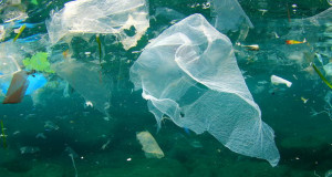 До 2050 година во морињата ќе има повеќе пластика од риба