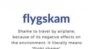 Движењето Flight shame ги обедини еколошки освестените Швеѓани
