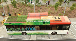 """Градини во движење: """"Зелени"""" покриви на автобусите во Сингапур"""
