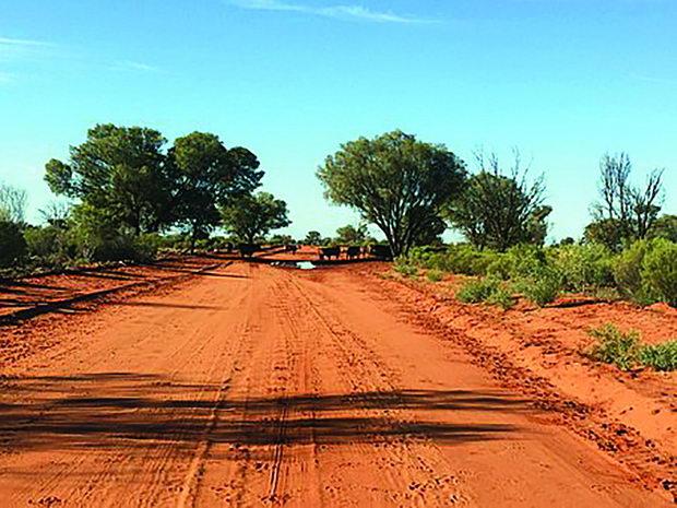 03 Австралиска дивина, Извор Pixabey