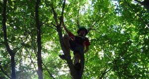 Берлин против отуѓувањето на децата од природата знае да се бори