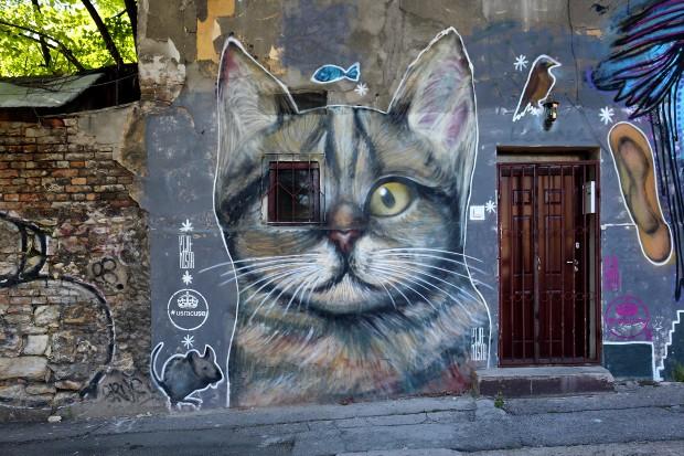 murali_beograd2