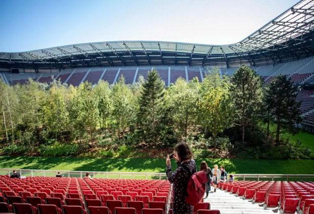 На австриски стадион порасна шума