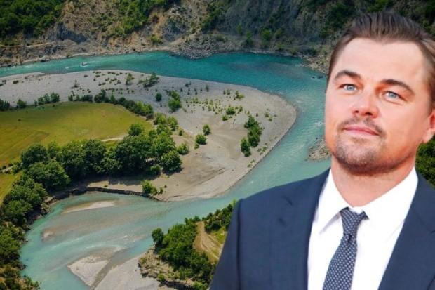 DiCaprio4