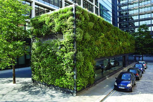 biophilic-building