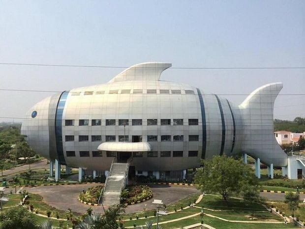 Najcudni gradbi-Zgrada riba vo Indija 1