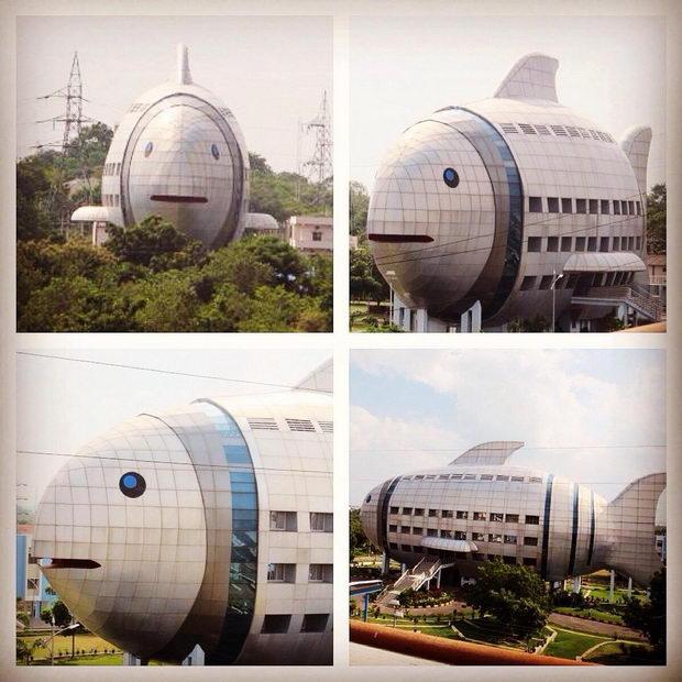 Najcudni gradbi-Zgrada riba vo Indija 4