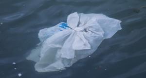 Дали би поддржале забрана за употреба на пластични кеси?