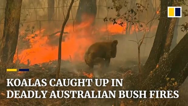 australiafires2