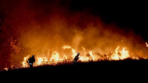 Австралиските архитекти со бесплатни проекти за погодените од пожарите