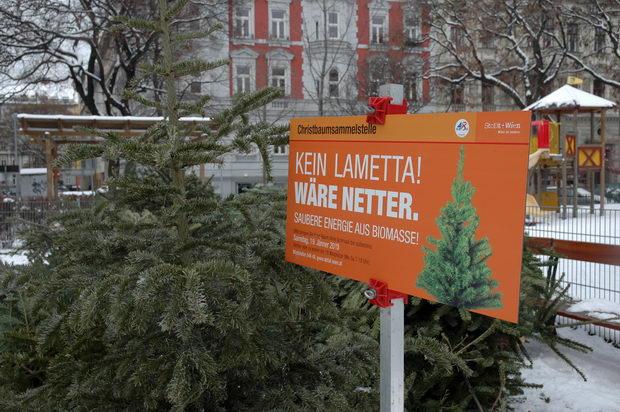 2014-01-15-ma-48-christbaumsammelstellen-noch-bis-samstag