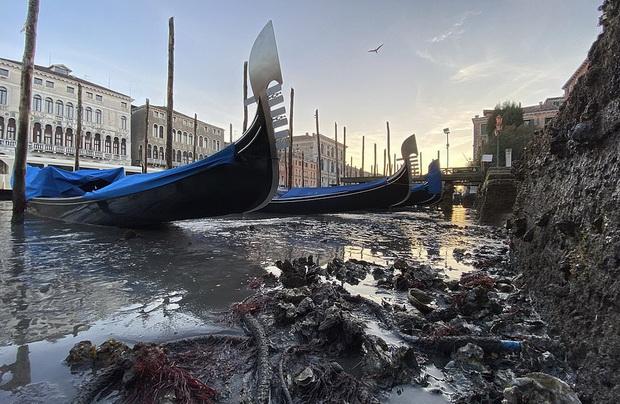 Венеција – каналите скоро пресушени, а гондолите насукани (видео)