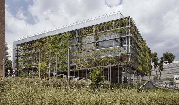 Зелениот ремонт на Барселона почна со изградба на објект прекриен со растенија