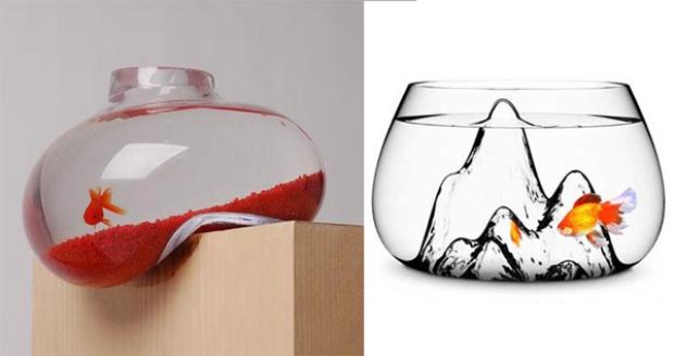 За љубителите на аквариуми (фото)
