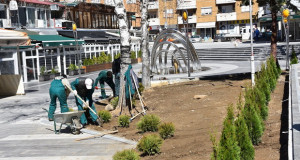 Озеленување на површините во Трговскиот центар во Кочани