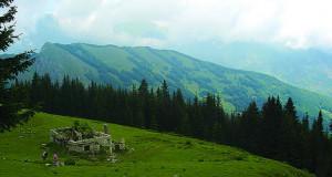 Сите вредности на Шар Планина