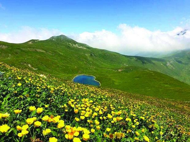 Sar planina1
