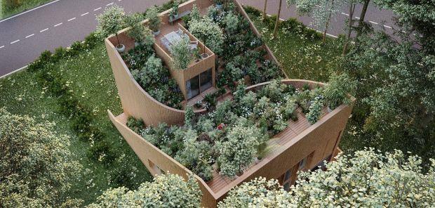 Скалеста куќа на која расте градина