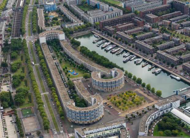 """Најголемиот зелен покрив во Холандија, """"никна"""" во Ротердам"""