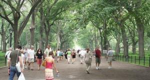 Да се потсетиме на важноста на зеленилото во градовите