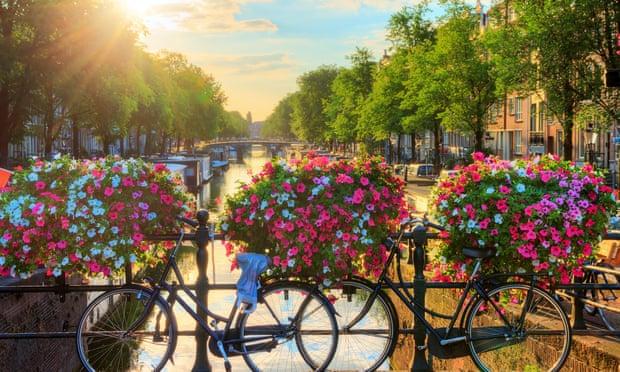 Во Амстердам цвеќињата имаат предност